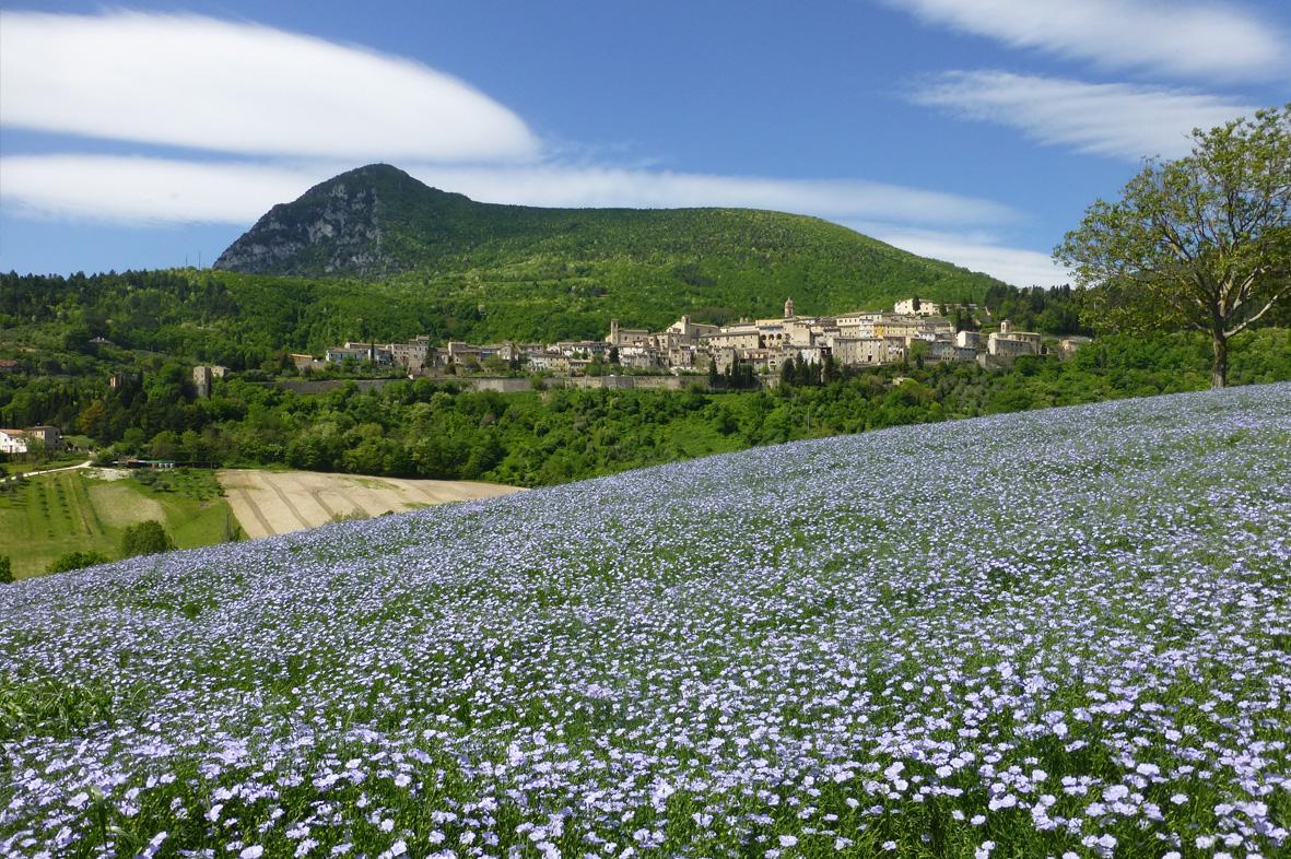 Paesaggio Serra San Quirico